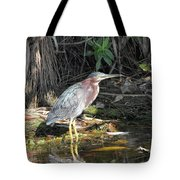 A Greenie With Reflection Tote Bag