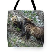 A Grizzly Moment Tote Bag