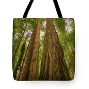 A Group Giant Redwood Trees In Muir Woods,california. Reaching F Tote Bag