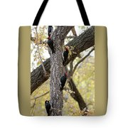 A Group Of Acorn Woodpeckers In A Tree Tote Bag