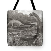 A Group Of Brontosaurs, Or Thunder Tote Bag