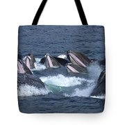A Group Of Humpback Whales Bubble Net Tote Bag