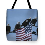 A Group Of Northern American Bald Tote Bag
