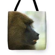 A Guinea Baboon At The Lincoln Tote Bag