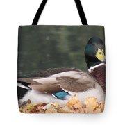 A Handsome Mallard Tote Bag