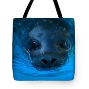 A Harbor Seal At The Lincoln Childrens Tote Bag