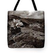 A Hard Existence - Sepia Tote Bag