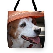 A Hat For Buddy Tote Bag