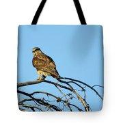A Hawks Eye View Tote Bag