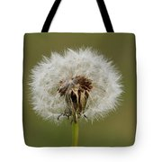 A Head Full Of Wishes Tote Bag
