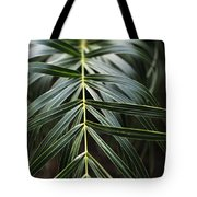 A Heart Begins In Nature Tote Bag