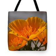 A Heart Of Gold  Tote Bag