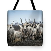 Grey Cattle Herd Tote Bag