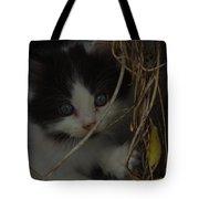 A Hiding Kitten Tote Bag