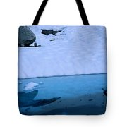 A Hiker Explores A Lake Near The Nellie Tote Bag