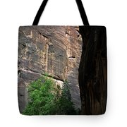 A Hiker Walks Among The Narrow Tote Bag