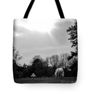 A Horse In Light Tote Bag