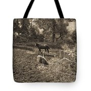 A Horse In The Field Tote Bag
