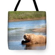 A Hot Day In The Hallo Bay Katmai National Park Preserve Tote Bag