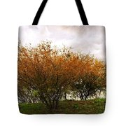 A Huisache Morning Tote Bag