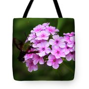 A Hummingbird Moth With Phlox Flowers Tote Bag