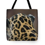 A Jaguar At Omahas Henry Doorly Zoo Tote Bag