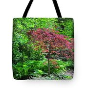 A Kingdom Of Dreams Tote Bag