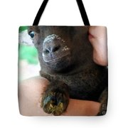 A Kiss For The Kid Tote Bag