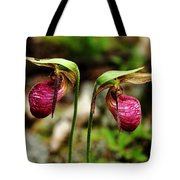 A Lady's Slippers Tote Bag