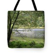 A Lake Near Glendalough Tote Bag