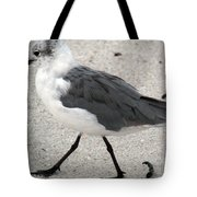 A Late Summer Walk Tote Bag