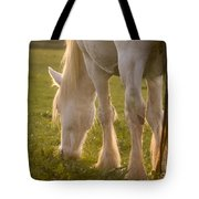 A Lazy Supper Tote Bag