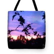 A Lighter Side Of A Sunset Tote Bag
