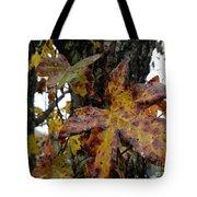 A Lil Bit Of Fall Tote Bag