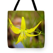 A Lilly In Bloom  Tote Bag