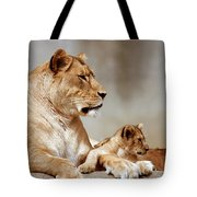 A Lioness And Cub Tote Bag