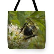 A Little Bee-hind Tote Bag