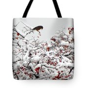A Little Bird So Cheerfully Sings Tote Bag