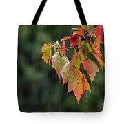 A Little Rain Must Fall Tote Bag