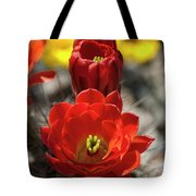 A Little Red Beauty  Tote Bag