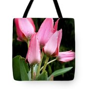 A Little Sunshine Please Tote Bag