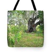 A Live Oak In Purgatory Tote Bag