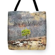 A Lonely Pine Tree Tote Bag