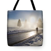 A Lonely Winter Tote Bag