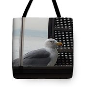 A Looking Seagull Tote Bag