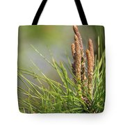 A Magical Forest Tote Bag
