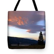 A Magnificent Moment 1 Tote Bag
