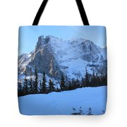 A Majestic Winter View Tote Bag