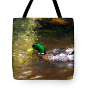 A Male Mallard Duck 3 Tote Bag