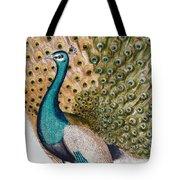 A Male Peacock In Full Display, 1763 Tote Bag